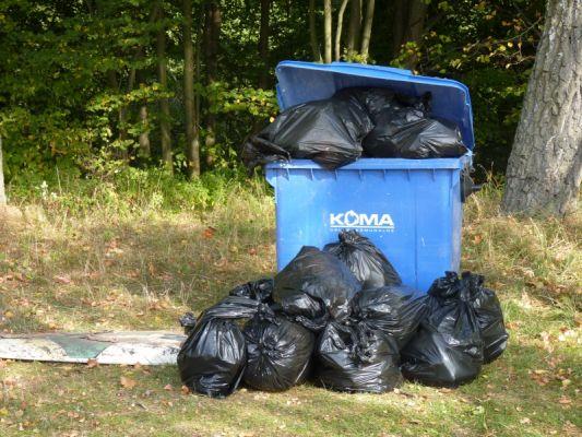 Sprzątania Świata – Polska 2015